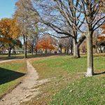 20 Strathcona Ave Toronto ON-small-035-30-Neighborhood-666x444-72dpi