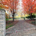 25 Scrivener Square Suite 807-print-035-36-Neighbourhood-2100x1400-300dpi